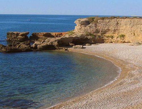 En verano ¡Disfruta de las playas de Vinaròs!