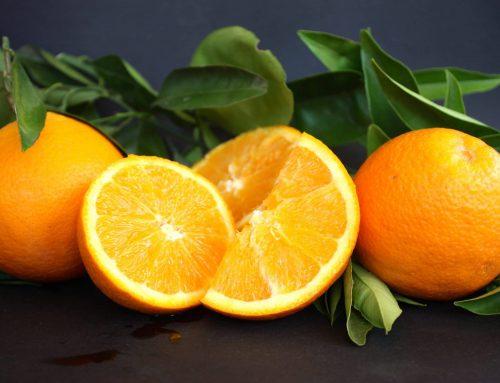 Por qué la naranja Navelate es la mejor del mundo